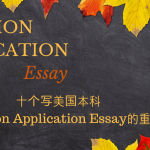 Common Application Essay (1)