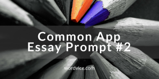 College Admissions Essay Advice: Common App Essay #2
