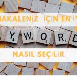 Makaleniz için Anahtar Kelimeleri Nasıl Seçersiniz