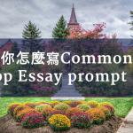 美國大學申請:你怎麼寫Common App Essay prompt #7