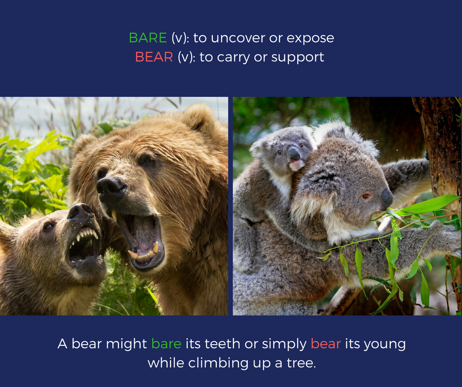 bare vs. bear