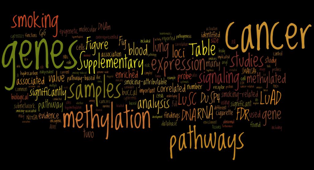 Wordle Analysis