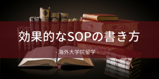 効果的なSOPの書き方