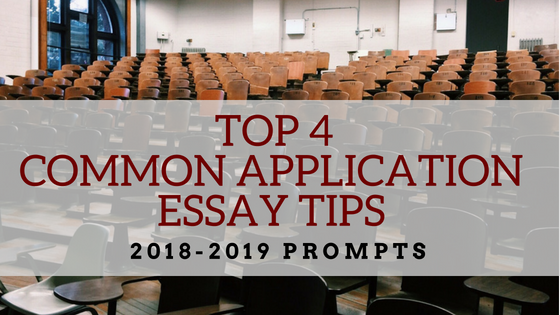 Common application essay help york times