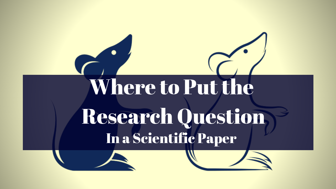 Explanation of where to put the research question in a research paper